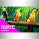 Bild von Blockout RollUp 330 B1