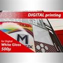 Bild von Magnetic Roll PVC 500